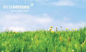 ecosenses_small image on homepage-01